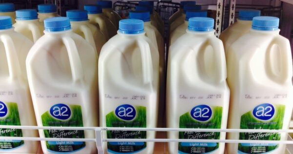 A2 Milk offers $176m to acquire 75% stake in Mataura Valley Milk